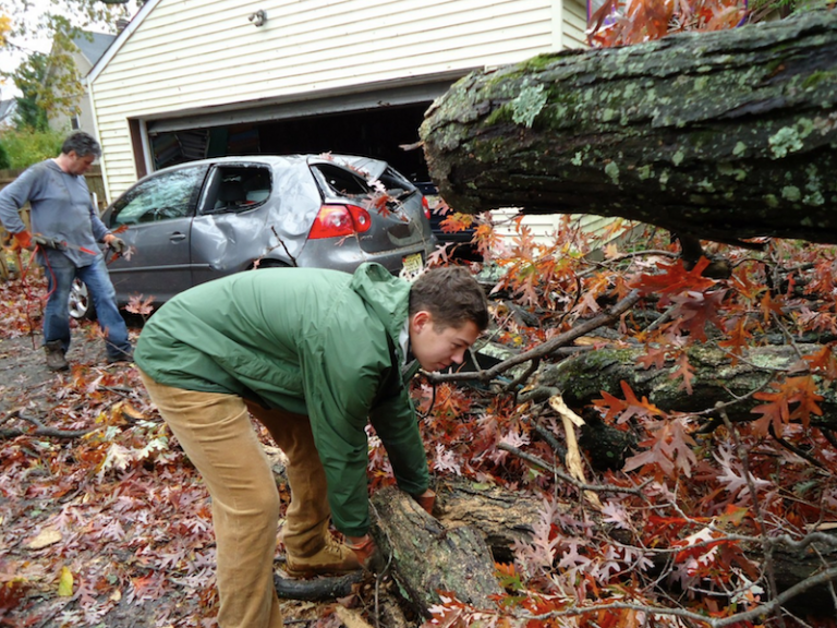 Portland 24 Hour Emergency Tree Service